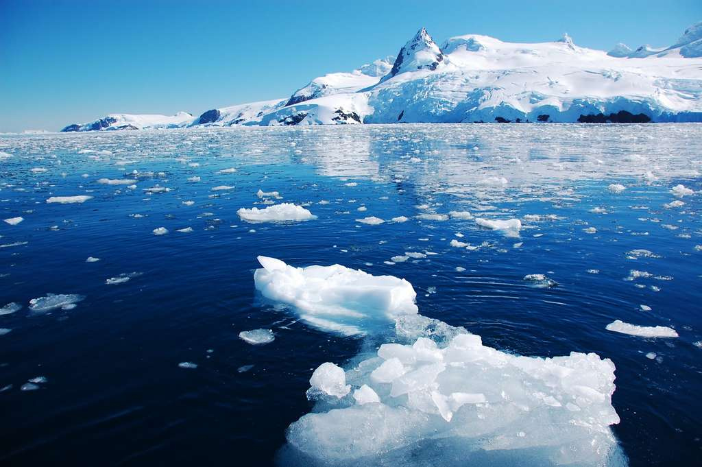 L'Antarctique a enregistré une température record de plus de 20°C. © nyankotoasobu, Adobe Stock