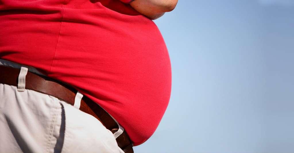 Comment prévenir l'obésité ? © Suzanne Tucker, Shutterstock