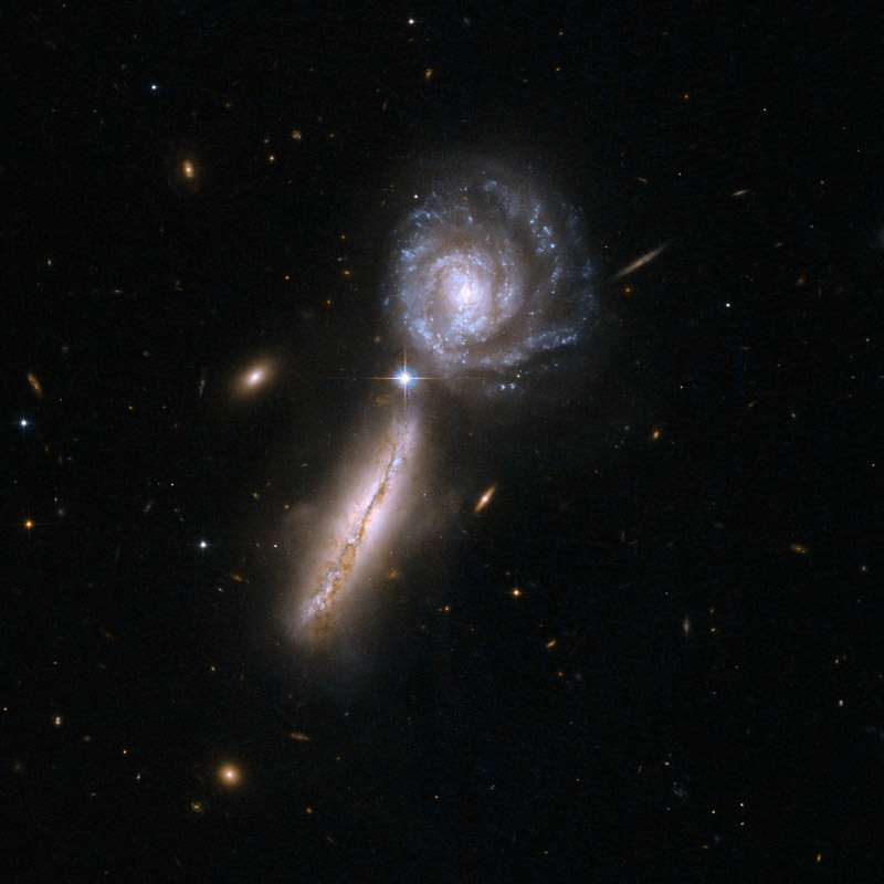 UGC 9618, également connu sous le nom VV 340 ou 302 Arp, se compose d'une paire de galaxies spirales très riches en gaz dans leurs premiers stades d'interaction : VV 340A est vue par la tranche à gauche, et VV 340B de face à la droite. UGC 9618 est à 450 millions d'années-lumière de la Terre. © Nasa, Esa, the Hubble Heritage (STScI/AURA)-Esa/Hubble Collaboration, A. Evans (University of Virginia, Charlottesville/NRAO/Stony Brook University)