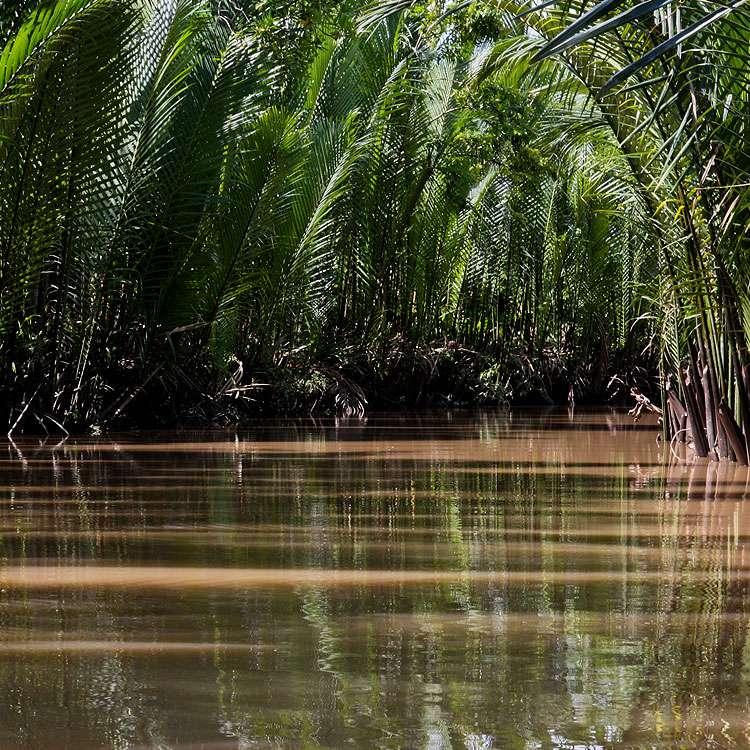 Delta du Mékong, au Vietnam. © LisArt, Flickr, CC by-nc 2.0