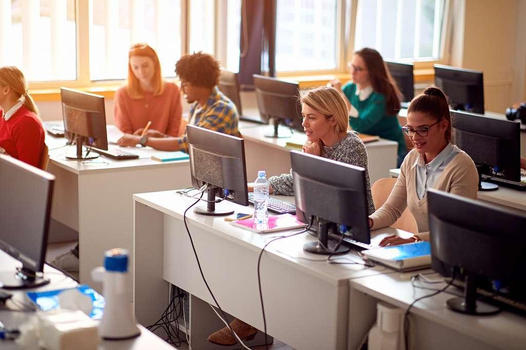 Pour se reconvertir dans l'informatique, de nombreuses formations existent notamment en université. © luckybusiness, Adobe Stock.