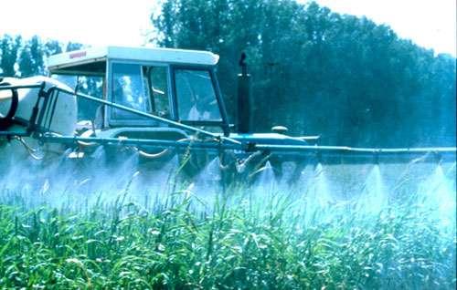 Traitement et pesticides. © Toute reproduction et utilisation interdites