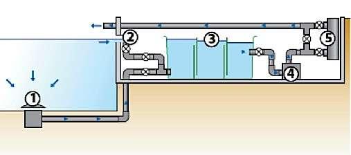 Pompe et filtre de bassin de jardin, installation en mode gravitaire. 1. Bonde de fond 2. Skimmer 3. Filtration multichambres 4. Pompe extérieure 5. Filtre UVC optionnel © Aquatic Science