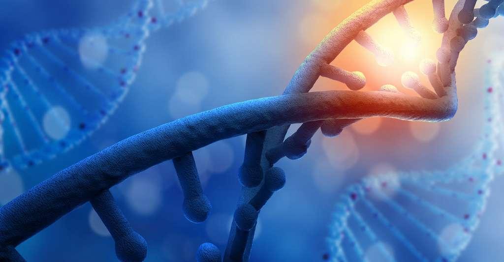 Décrypter la molécule d'ADN. © Sergey Nivens, Shutterstock