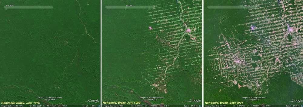 Trois images de la forêt amazonienne, prises par les satellites Landsat au-dessus de la même région de l'État de Rondônia, au Brésil, en 1975, 1989 et 2001. © USGS