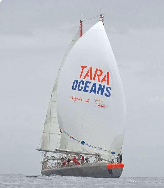 Tara est un voilier gréé en goélette, à la coque renforcée pour résister à la banquise. Sous le nom d'Antarctica, le navire a appartenu à Jean-Loup Etienne pour ses expéditions en milieu polaire. Sous le nom de Tara, la goélette s'est laissé prendre par la banquise arctique et a dérivé pendant 500 jours avec elle. © J. Girardot - Fonds Tara