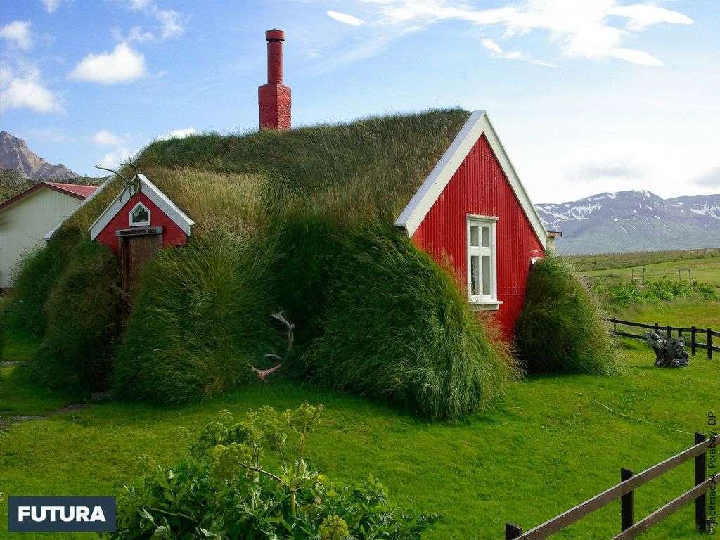 Ma petite maison végétalisée en Islande...