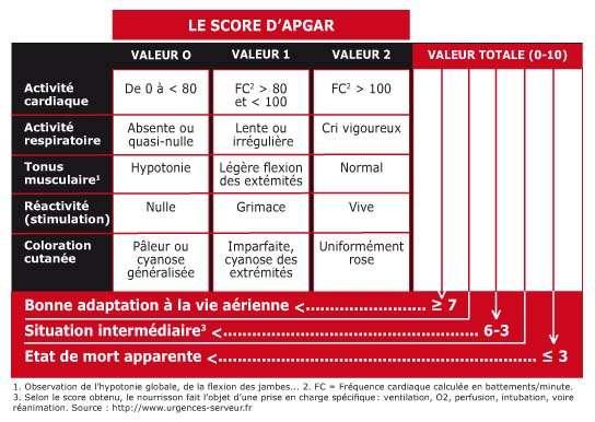 Le score d'Apgar, de 0 à 10, est établi sur cinq critères. Un score supérieur ou égal à 7 indique que l'enfant est en bonne santé. © DR