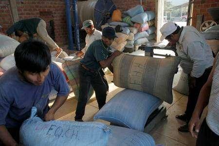 Expédition en commun des sacs de café de la coopérative Mejillones, dans les Yungas, en Bolivie. Chaque sac porte les initiales du sociétaire qui l'a produit. Tous sont pesés avant d'être chargés dans le camion qui attend au dehors. Unis au sein de coopératives démocratiques et transparentes, les producteurs de café font valoir leurs positions, gagnent en autonomie et construisent des équipements qui bénéficient à tous © Max Haavelar - Photo Bruno Fert - Tous droits réservés