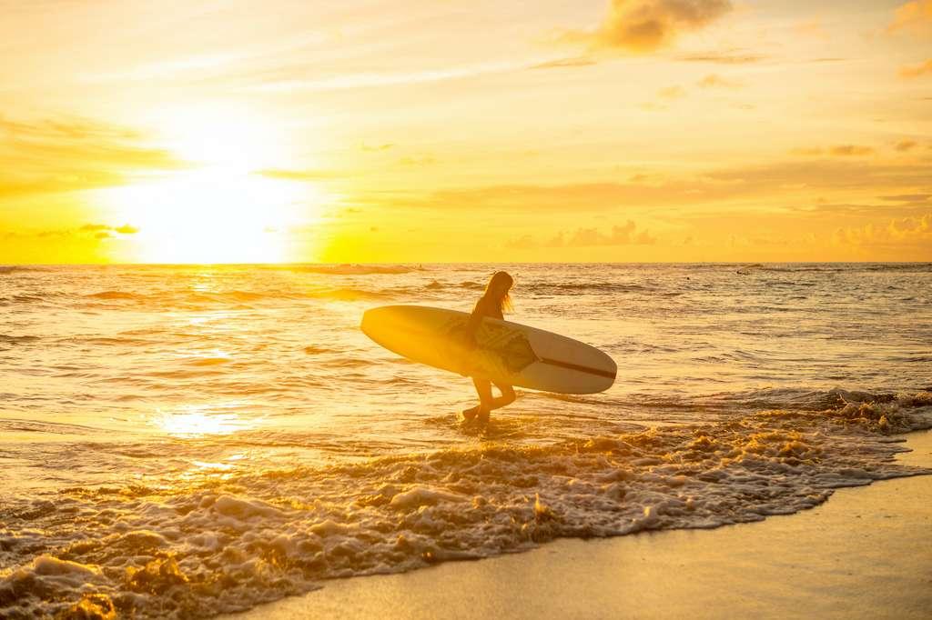 L'été en Australie s'est allongé d'un mois en 50 ans. © Mikalai Bachkou, Adobe Stock