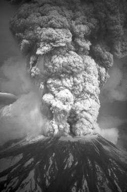 L'éruption du mont St Helens en 1980, dans l'État de Washington, aux États-Unis (cliquer pour agrandir). Celle de Toba fut environ mille fois plus puissante... © USGS