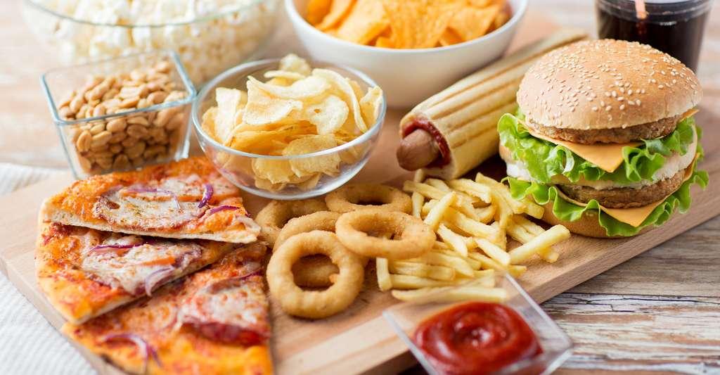 Selon des chercheurs canadiens de l'université de Montréal, une alimentation riche en graisses saturées pourrait provoquer des troubles de l'humeur. © Syda Productions, Shutterstock