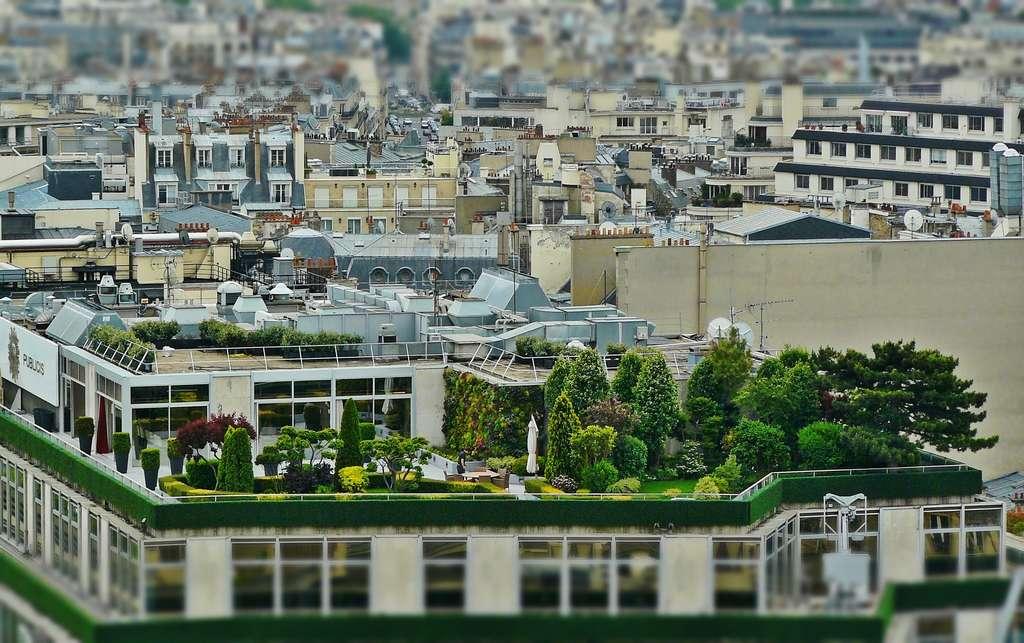 Les fermes urbaines sont de plus en plus présentes en France. © cocoparisienne, Pixabay