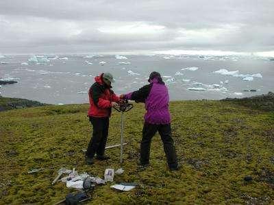 Des chercheurs ont récupéré des échantillons de mousse dans des couches du pergélisol antarctique congelées depuis plus de 1.500 ans. © P. Boelen