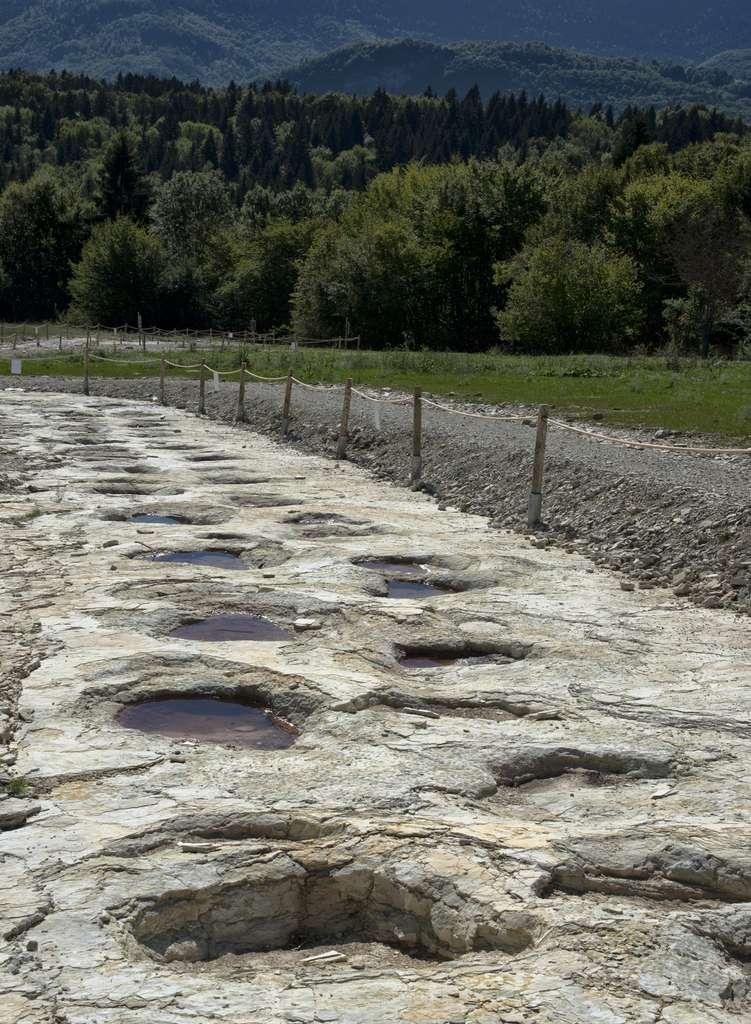 Les traces de dinosaures de la piste de Plagne dans l'Ain. © nmnac01, Fotolia