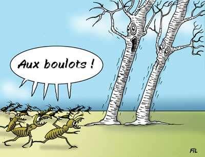 © Fil - Gueules d'Humour pour Futura-Sciences