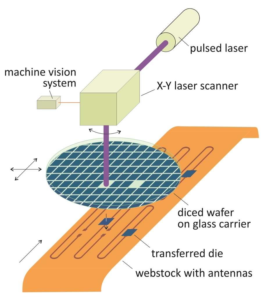 Ce schéma détaille le procédé de gravure au plasma qui permet de transférer une puce RFID directement sur du papier. La source provient d'un laser pulsé (pulsed laser) dont le rayon est dirigé sur une galette de silicium (diced wafer on glass carrier) par un scanner laser à deux axes. La portion rectangulaire du wafer (die) sur laquelle ont été gravés les circuits d'une puce est alors transférée sur le papier à l'endroit où elle vient se connecter à l'antenne intégrée (webstock with antennas). © Center for Nanoscale Science and Engineering, université d'État du Dakota du Nord
