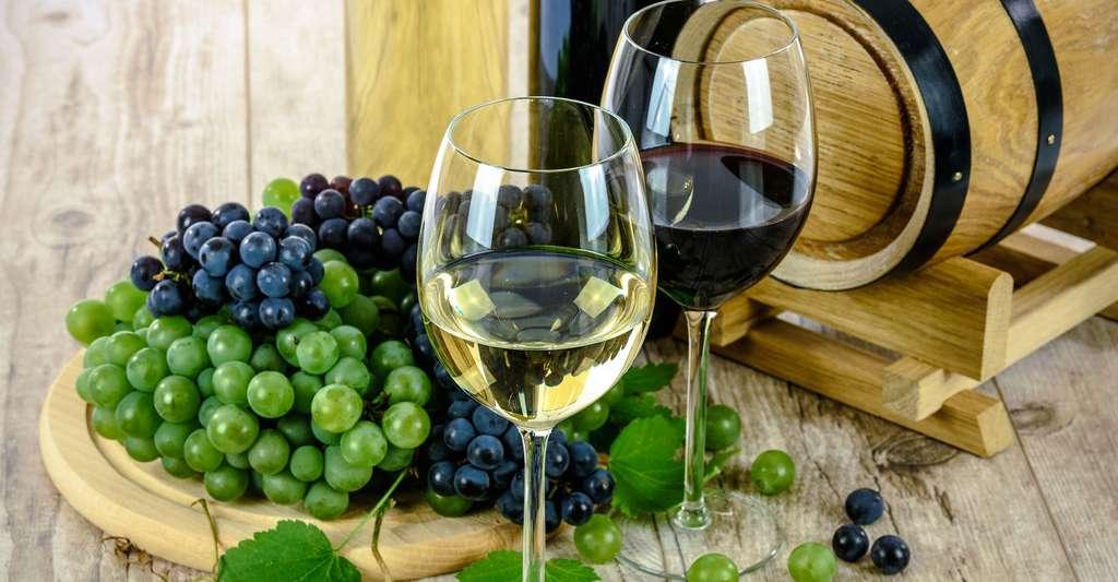 Les vins d'Alsace sont très réputés. © Photo-Mix, Pixabay, DP