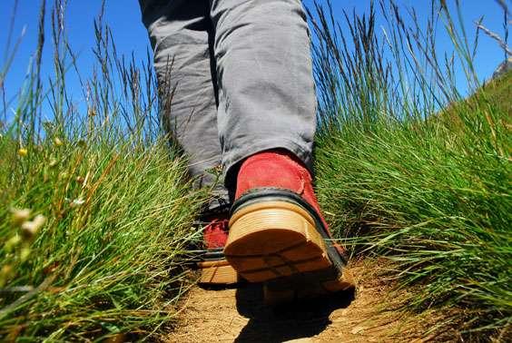 En randonnée, pour échapper aux tiques, portez des vêtements couvrants. © Fotolia