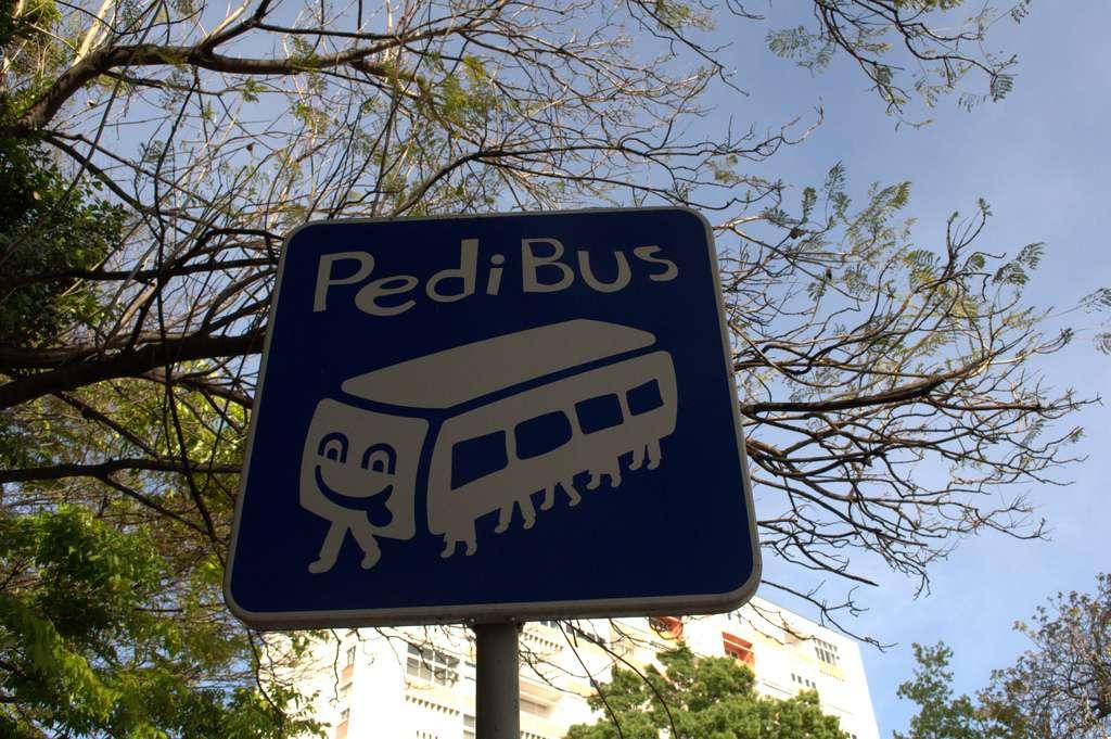 Le pédibus, une autre façon d'aller à l'école