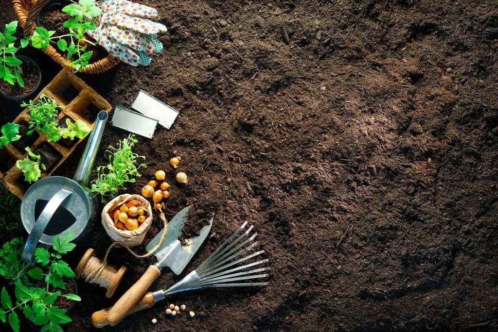 Mieux vaut connaître la nature du sol et améliorer la terre de son jardin avant de semer ou planter. © Alexander Raths, Adobe Stock