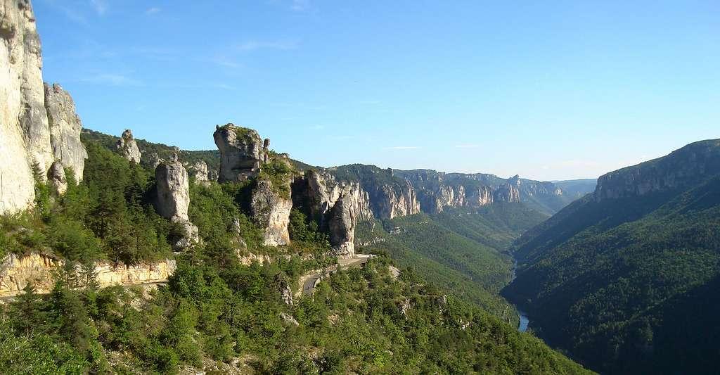 Gorges du Tarn, prise au dessus du village Les Vignes depuis le causse Méjean. © Lisa Estival, Wikimedia commons, CC by-sa 4.0
