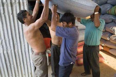 Expédition en commun des sacs de café de la coopérative Mejillones, dans les Yungas, en Bolivie. Après pesage, les sacs sont transportés à dos d'homme vers le camion qui attend au-dehors. Unis au sein de coopératives démocratiques et transparentes, les producteurs de café font valoir leurs positions, gagnent en autonomie et construisent des équipements qui bénéficient à tous. © Max Haavelar - Photo Bruno Fert Tous droits réservés