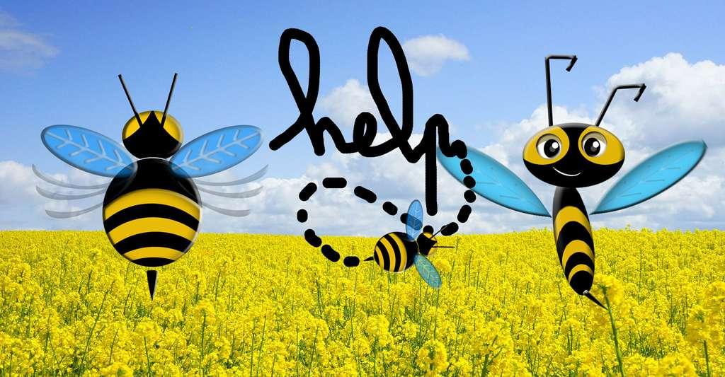 Découvrez nos tee-shirts pour la protection des abeilles. © DR