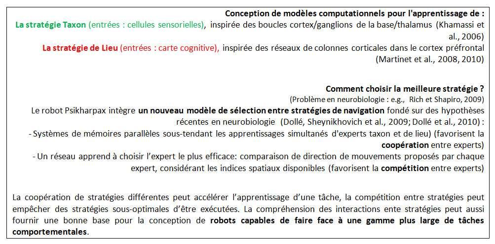 Comment le robot peut gérer la coordination et la compétition entre deux systèmes de décision ? © DR