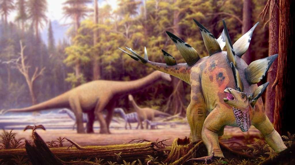 Albertosaurus - squelette