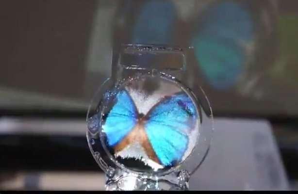 Sur un film de savon, un papillon s'est posé. C'est la curieuse innovation de scientifiques de l'université de Tokyo. Un vidéoprojecteur envoie l'image sur cet écran et un haut-parleur à ultrasons, en faisant vibrer la membrane, module à loisir sa réflectivité, sa transparence et sa luminosité. On peut notamment superposer plusieurs écrans pour obtenir toutes sortes d'effets, par exemple tridimensionnels. © Université de Tokyo
