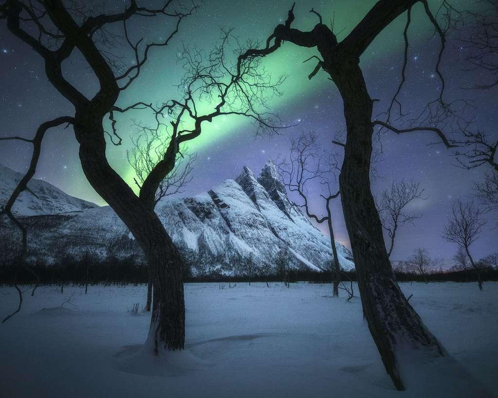 Nuit magique, Tromsø, Norvège