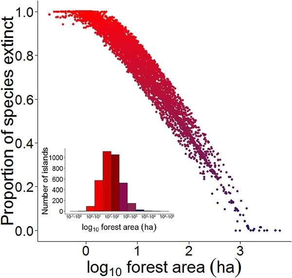 Proportion des espèces de vertébrés forestiers susceptibles d'avoir localement disparu en fonction de la superficie de parcelle de forêt modélisée sur 3.546 îlots forestiers du réservoir hydroélectrique Balbina : plus les îles sont petites en surface, plus le taux d'extinction est élevé (augmentation du bleu au rouge). © Benchimon et al., Plos One