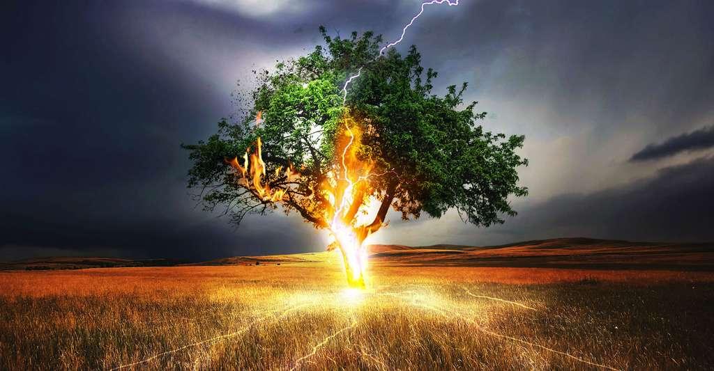 L'orage peut être l'un des facteurs de départ de feu de forêt. © Comfreak CC0