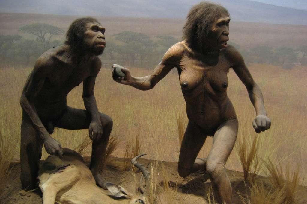 Homo ergaster, l'Homme artisan, qui vivait en Afrique il y a entre 1,8 et 1,3 million d'années, est connu pour avoir perfectionné les techniques de fabrication des outils. Mais lui doit-on également le langage ? © Wallyg, Flickr, cc by nc nd 2.0