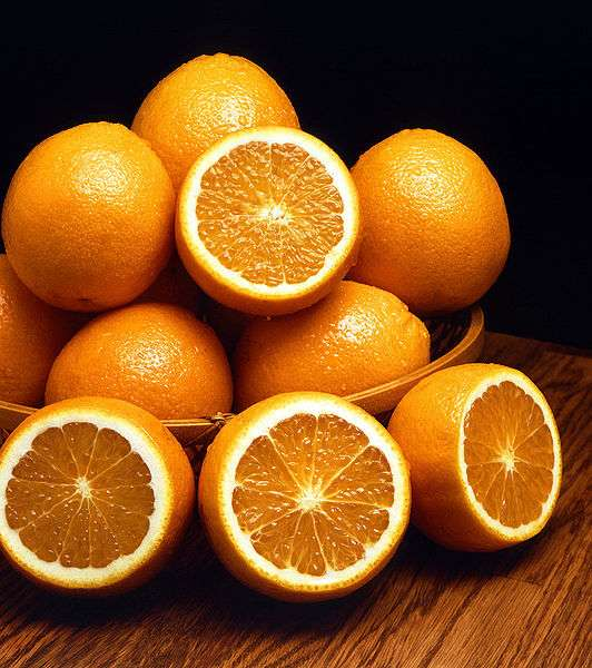 Il est important de distinguer le Citrus sinensis, orange douce, du Citrus aurantium, orange amère, qui a des feuilles plus longues et un parfum plus puissant. © DR