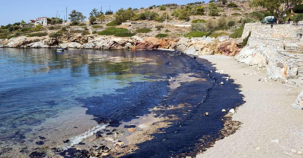 Le condensat qui s'est échappé du Sanchi correspond à un produit pétrolier léger qui ne s'accumule pas en nappes de pétrole lourd visibles de tous. Et qui, comme ici, finissent par s'échouer sur les plages. C'est pourquoi le terme de marée noire n'est pas des plus adaptés dans ce cas. © 008melisa, Fotolia