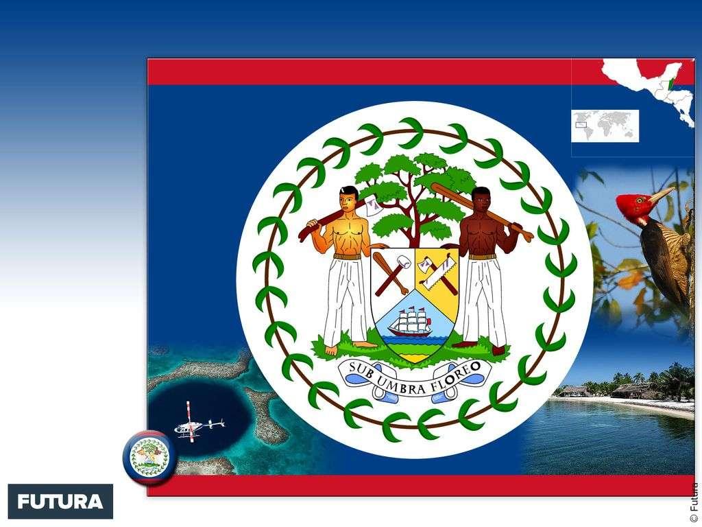 Drapeau : Belize