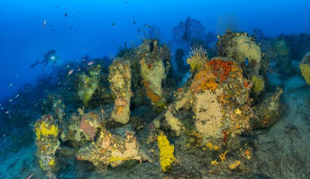 Au croisement de la technologie, de la science et de la photographie, l'expédition Gombessa V était l'occasion pour les quatre aventuriers-plongeurs d'observer des milieux marins exceptionnels de Méditerranée, tel que par exemple ici un massif coralligène au niveau du Cap Lardier (Var). Comme partout ailleurs dans le monde, les coraux méditerranéens sont menacés par le réchauffement, l'acidification et la pollution des océans due aux activités humaines. © Laurent Ballesta, Andromède Océanologie, Gombessa V