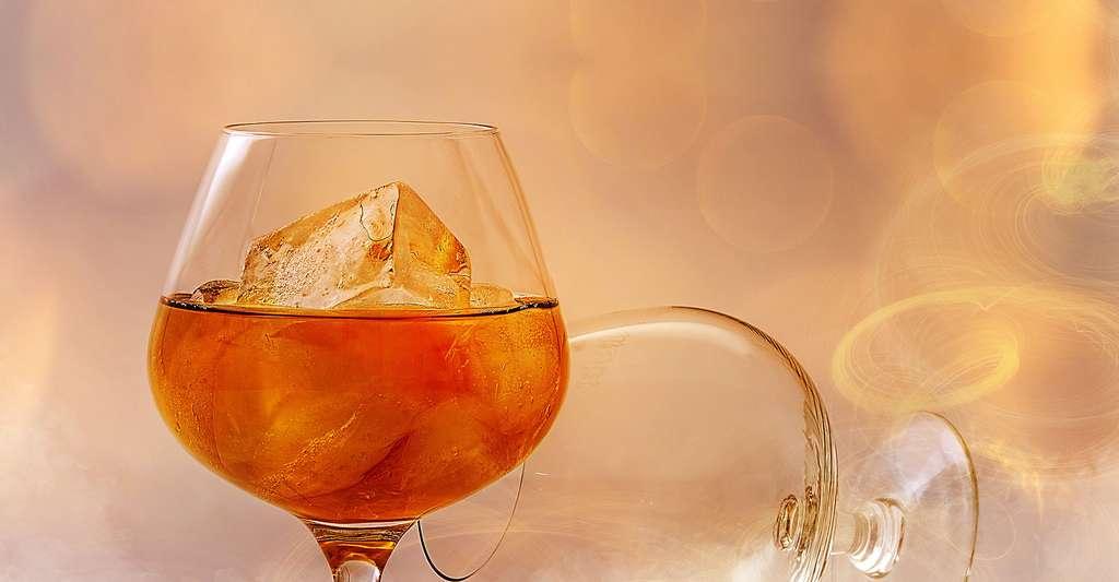 Les dépendances à l'alcool. © Pezibear, Pixabay, DP