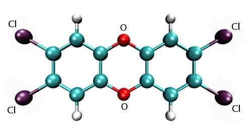 Un exemple de polychlorodibenzo-p-dioxine (PCDD) : la 2,3,7,8-tétrachlorodibenzo-p-dioxine, dite dioxine de Seveso. Elle est l'une des plus nocives des PCDD. Ces dernières sont constituées de deux noyaux de benzène, de deux atomes d'oxygène et d'atomes de chlore, de fluor ou de brome. © Kelson, GNU 1.2