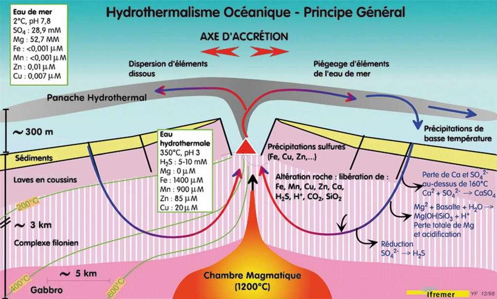 Coupe transversale au niveau d'une dorsale rapide montrant les phénomènes hydrothermaux. © Ifremer