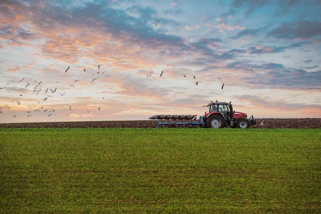 Avec la crise de Covid-19, le travail des agriculteurs est apparu essentiel notamment pour assurer des circuits courts. © Image'in, Adobe Stock.