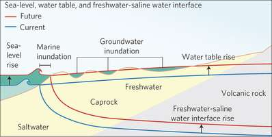Diagramme conceptuel de l'aquifère au sud d'Oahu à Hawaï. Les traits bleus caractérisent les niveaux actuels (current) et les rouges les projections futures. Les zones en vert montrent l'effet de l'augmentation du niveau de la mer (sea level rise). La vague indique l'effet direct de l'inondation marine et les creux en vert montrent l'influence des eaux souterraines. La flèche de gauche indique la variation du niveau de la mer, la flèche en haut à droite montre l'augmentation du niveau de la nappe phréatique (Water table rise). © Rotzoll et Fletcher, Nature Climate Change