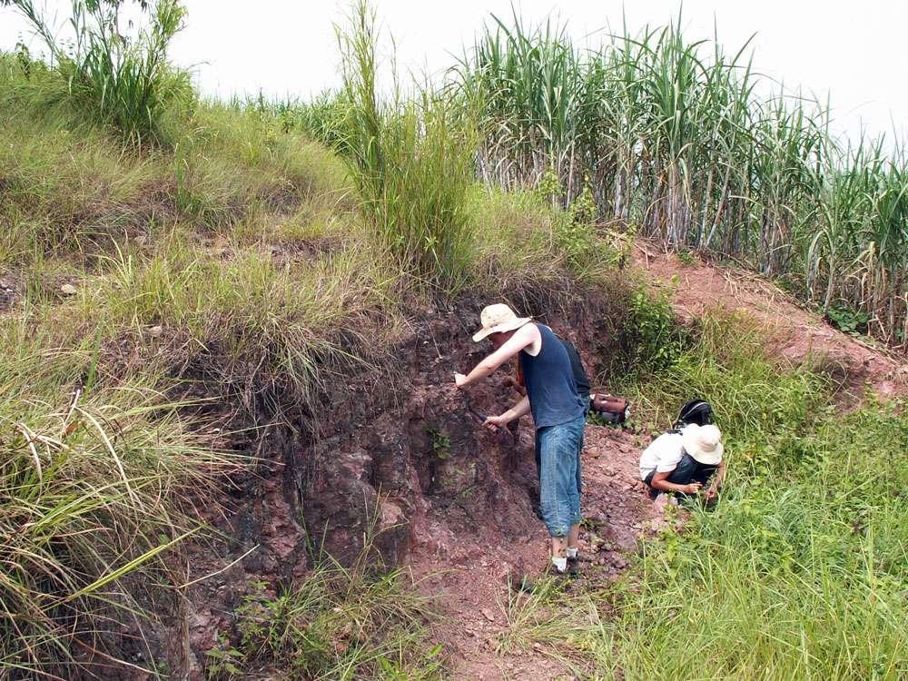 Collecte de restes de dinosaures et autres reptiles dans un gisement du Crétacé inférieur du Guangxi (sud de la Chine). © Romain Amiot, DR