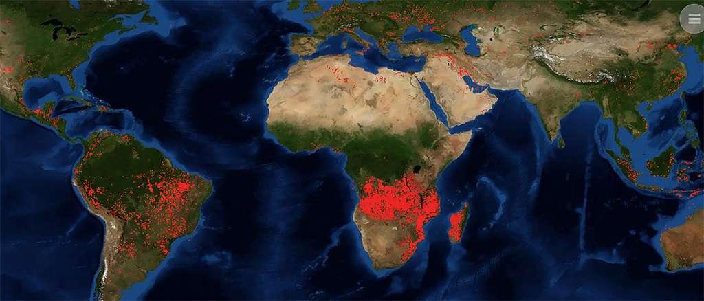 Un spécialiste de l'Afrique note toutefois que les feux observés par la Nasa, au 27 août depuis ces dernières 24 heures, ne correspondent pas aux zones des forêts du bassin du fleuve Congo. © Nasa