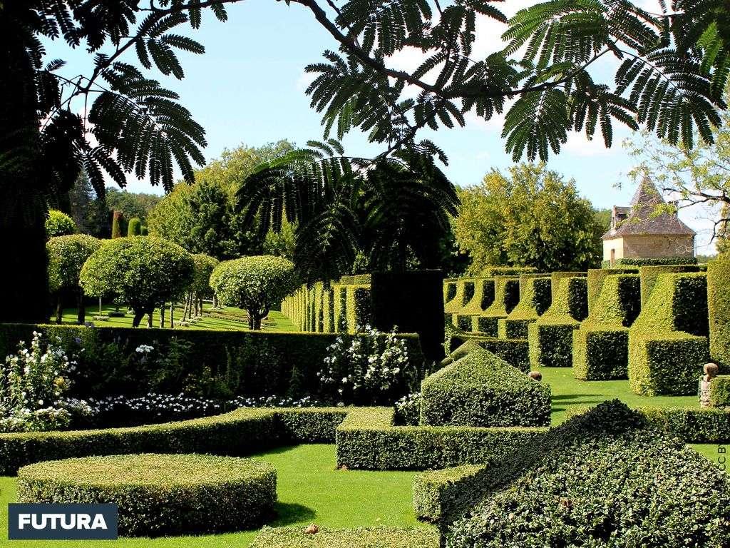 Jardins dans le bordelais