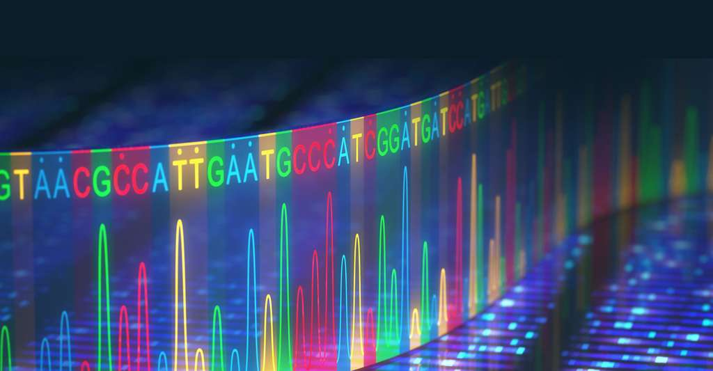 Séquençage de l'ADN. © Ktsdesign, Fotolia