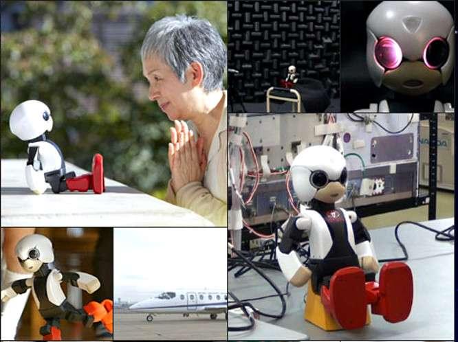 Le Kibo Robot Project veut révolutionner les interfaces Homme-machine, pour répondre au besoin d'interaction sociale des personnes isolées. Un premier test dans l'espace pour le petit robot ! © Kibo Robot Project