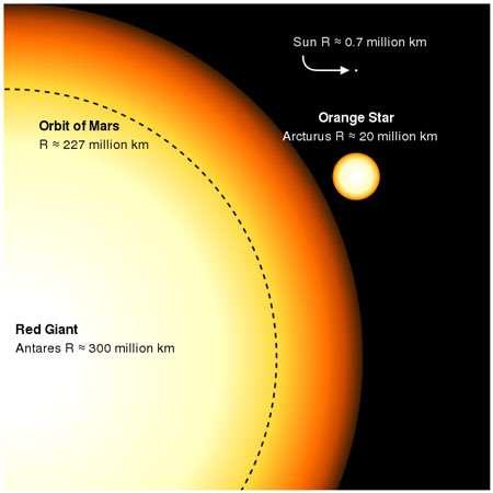 Tailles respectives du Soleil et de géantes rouges (ou oranges) © Wikipedia domaine public